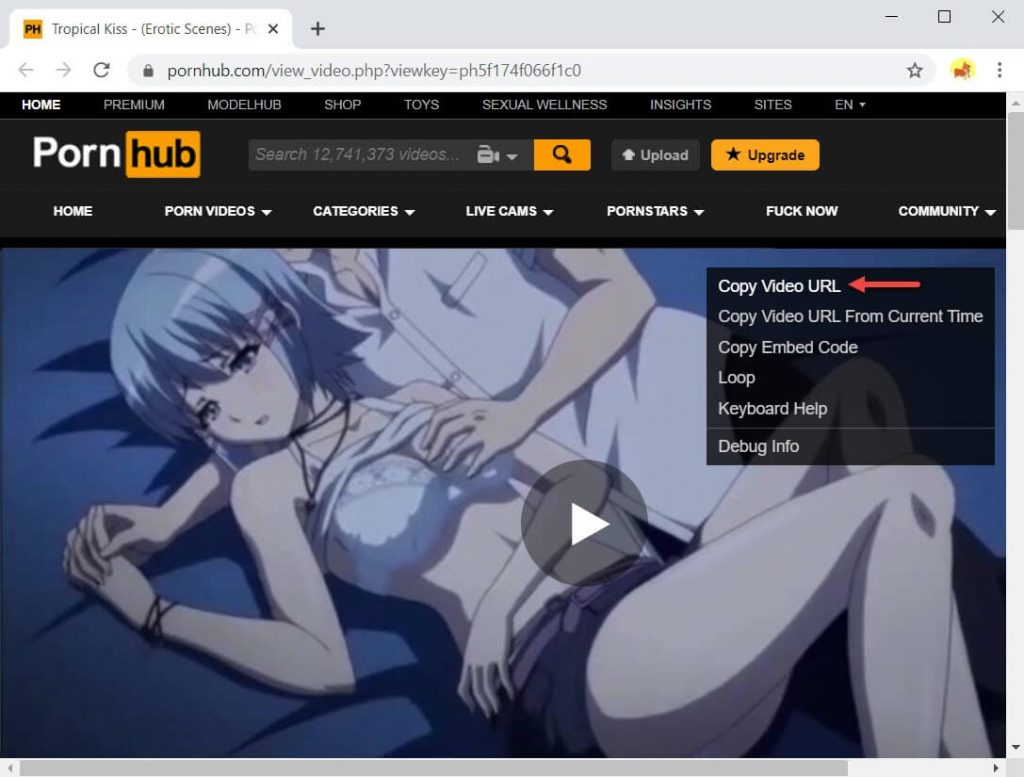 How to download Pornhub videos